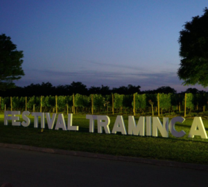 2. Festival traminca